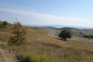 Read more about the article Einsame Straßen und die Castelul Corvinilor